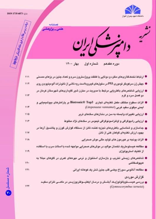 دامپزشکی ایران